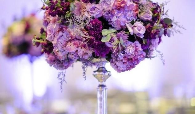 Düğün Firmaları Eğitim Danışmanlığı