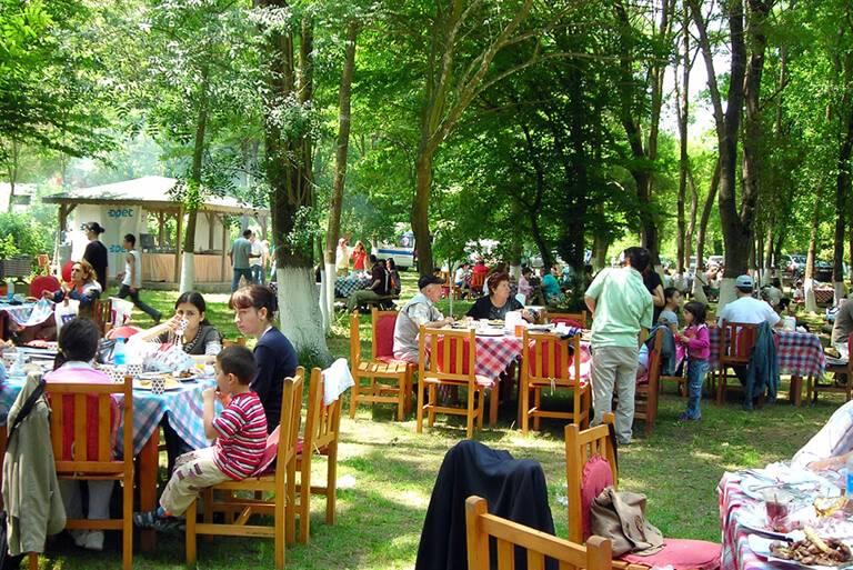 Piknik Organizasyonları